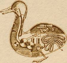 duck-robot